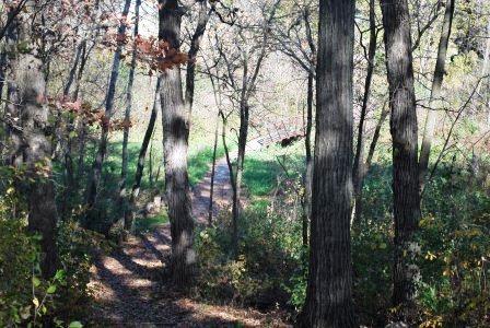 Denoon Park Walking Path