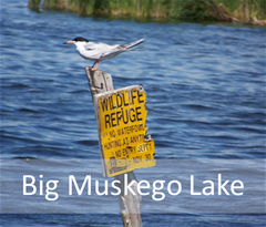 Big Muskego Lake