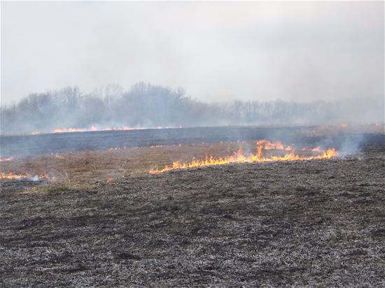 Prairie burn at Engel Conservation Area
